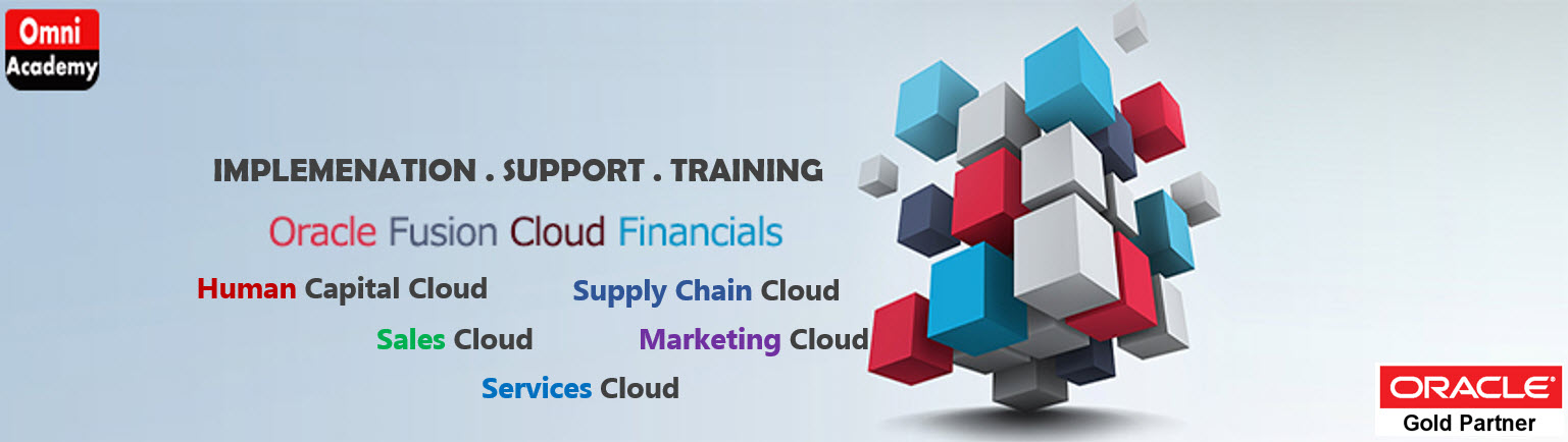 Oracle Fusion Cloud Implementation Partner and support