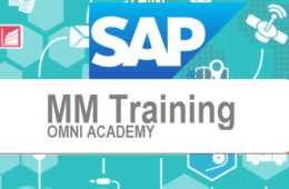 SAP MM Material Management