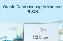 PLSQL Course