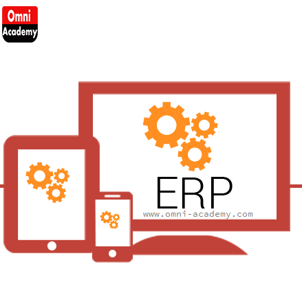 SAP ERP Course