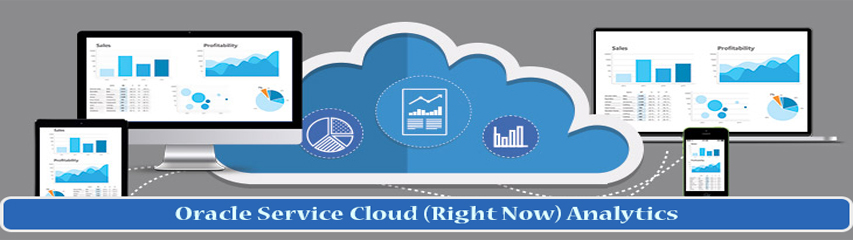 Oracle RightNow Training Canada | Service Cloud Online