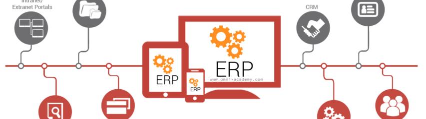 SAP Training in Karachi | 20% FEE OFF | Diploma SAP- FICO MM