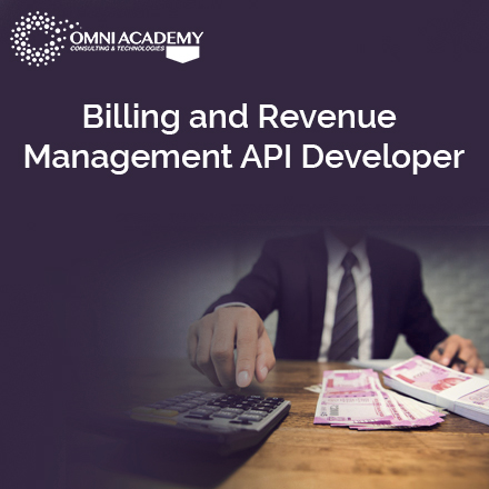 API Developer Course