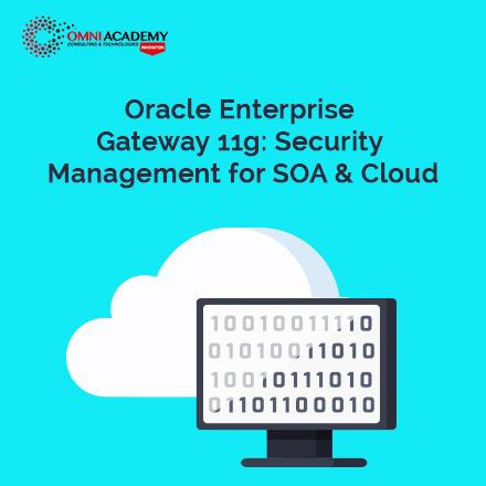 Oracle Enterprise 11g Course