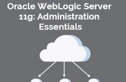 Weblogic 11g Course