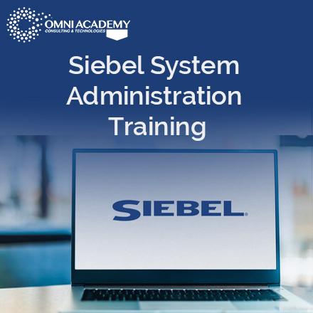 Siebel System Training