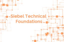 Siebel Technical Foundation Course