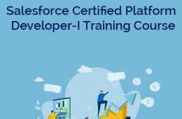 Developer 1 Course