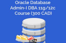 Oracle dba Course