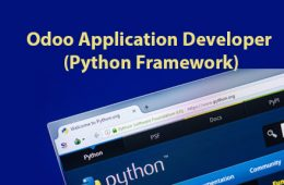 Odoo Python Course