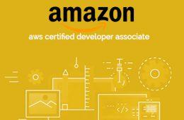 AWS Developer Associate Course